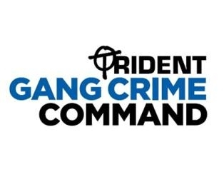 Trident Gang Crime Command logo should be here
